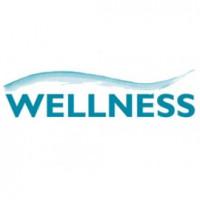 Wellness-индустрия